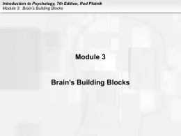 Module 3 Brain's Building Blocks Introduction to Psychology, 7th Edition, Rod Plotnik