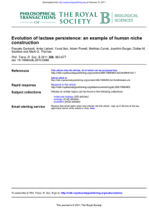 Evolution of lactase persistence: an example of human niche construction