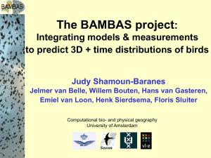 The BAMBAS project : Integrating models & measurements