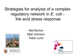 Strategies for analysis of a complex E. coli - Neil Burton