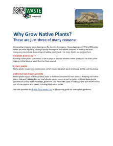 Why Grow Native Plants? These are just three of many reasons: