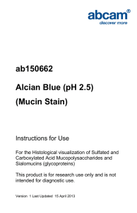 ab150662 Alcian Blue (pH 2.5) (Mucin Stain) Instructions for Use