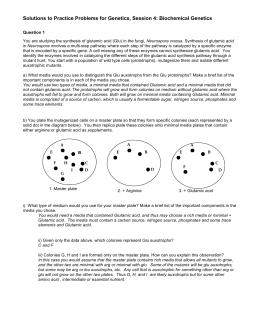 Bot 1010 exam 3 genetics 1