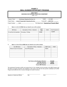 SBOP FORM # 2 EXHIBIT 5 SMALL BUSINESS OPPORTUNITY PROGRAM