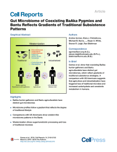 Gut Microbiome of Coexisting BaAka Pygmies and Patterns