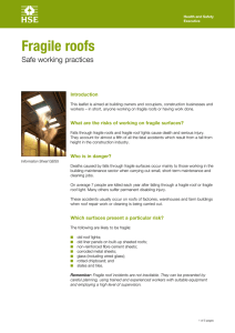 Fragile roofs Safe working practices Introduction