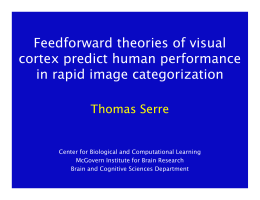 Feedforward theories of visual cortex predict human performance in rapid image categorization