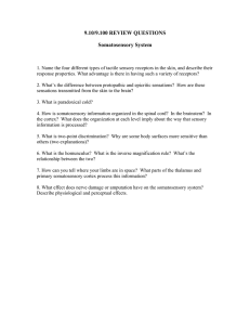 9.10/9.100 REVIEW QUESTIONS Somatosensory System