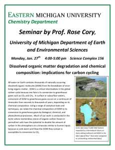 Seminar by Prof. Rose Cory  Chemistry Department ,