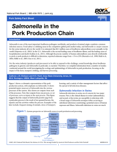 Salmonella Pork Production Chain Pork Safety Fact Sheet