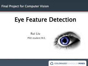 Eye Feature Detection Rui Liu Final Project for Computer Vision PhD student M.E.