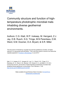 Community structure and function of high- temperature phototrophic microbial mats
