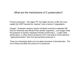What are the mechanisms of C preservation?