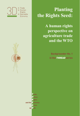 Planting the Rights Seed: A human rights perspective on
