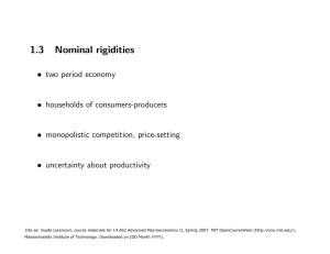 1.3  Nominal  rigidities