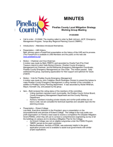 MINUTES  Pinellas County Local Mitigation Strategy Working Group Meeting