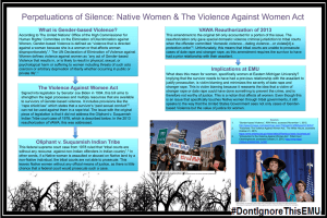 Perpetuations of Silence: Native Women & The Violence Against Women... VAWA Reauthorization of 2013 What is Gender-based Violence?