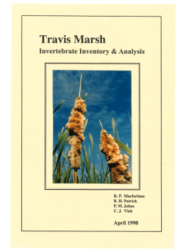 Travis Marsh Invertebrate Inventory Analysis &