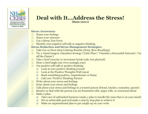Deal with It…Address the Stress!