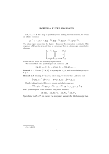 LECTURE  8:  PUPPE  SEQUENCES