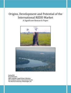 Origins, Development and Potential of the International REDD Market