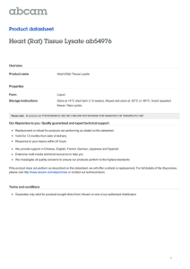 Heart (Rat) Tissue Lysate ab54976 Product datasheet Overview Product name