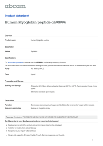 Human Myoglobin peptide ab90994 Product datasheet Overview Product name