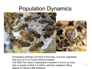 Population Dynamics Chapter 10