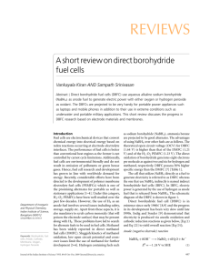REVIEWS A short review on direct borohydride fuel cells