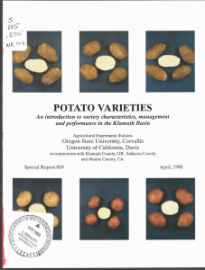 POTATO VARIETIES An introduction to variety characteristics, management Oregon State University, Corvallis