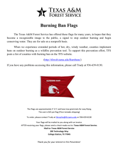 Burning Ban Flags
