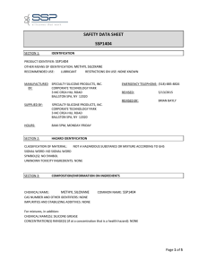 SAFETY DATA SHEET SSP1404 METHYL SILOXANE