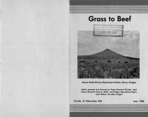 "Grass to Beef JUN 20 19G0 ""w Squaw Butte-Harney Experiment Station, Burns, Oregon"