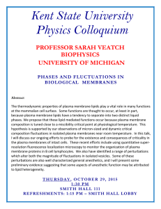 Kent State University Physics Colloquium  PROFESSOR SARAH VEATCH