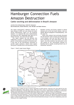 Hamburger Connection Fuels Amazon Destruction Cattle ranching and deforestation in Brazil's Amazon 1