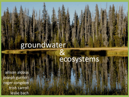 groundwater & ecosystems allison aldous