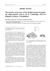 SHORT NOTES The invasive occurrence of the Mediterranean dwarfspi- Diplocephalus graecus
