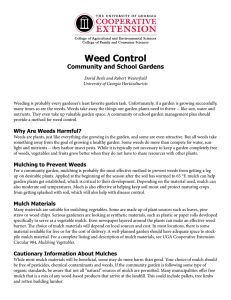 Weed Control Community and School Gardens