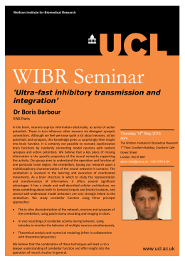 WIBR Seminar  'Ultra-fast inhibitory transmission and integration'