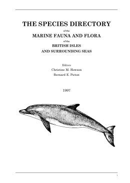 THE SPECIES DIRECTORY MARINE FAUNA AND FLORA BRITISH ISLES AND SURROUNDING SEAS