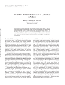What Does It Mean That an Issue Is Conceptual in Nature?