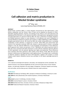 Cell adhesion and matrix production in Meckel Gruber syndrome Dr Helen Dawe 15