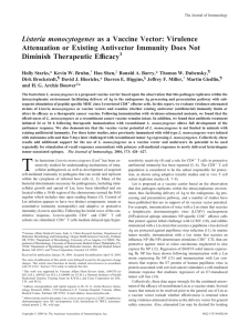 Listeria monocytogenes Attenuation or Existing Antivector Immunity Does Not Diminish Therapeutic Efficacy