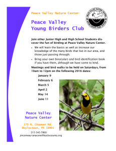 Peace Valley Young Birders Club Peace Valley Nature Center