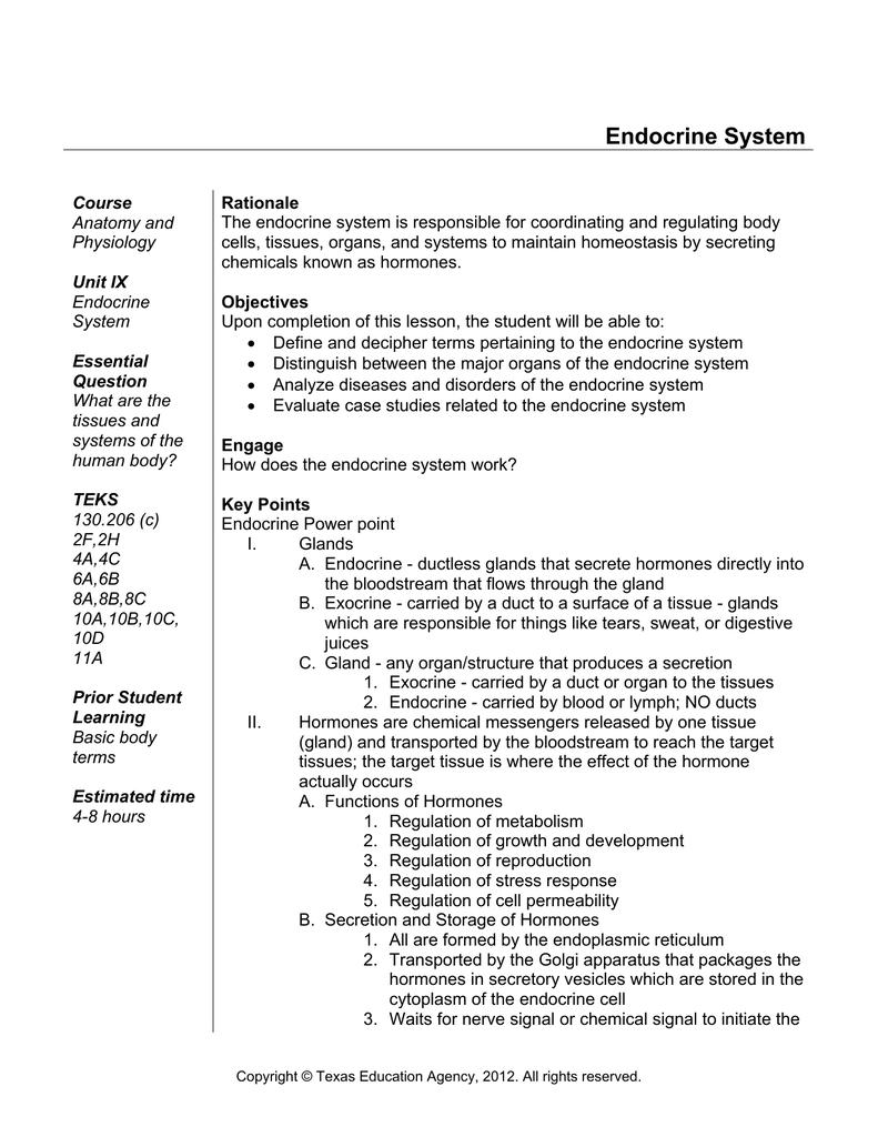 Endocrine System Case Studies Worksheet - Livinghealthybulletin