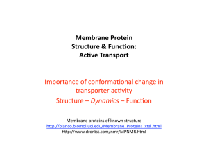 Cell membrane, transport