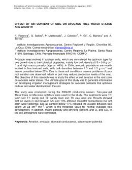 Proceedings VI World Avocado Congress (Actas VI Congreso Mundial del... Viña Del Mar, Chile. 12 – 16 Nov