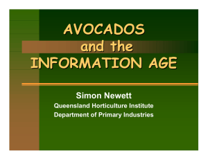AVOCADOS and the INFORMATION AGE Simon Newett