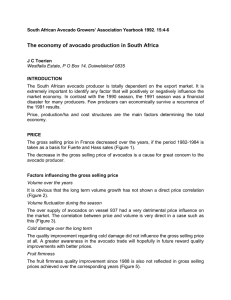 The economy of avocado production in South Africa