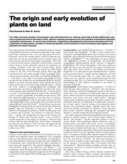 The origin and early evolution of plants on land review article
